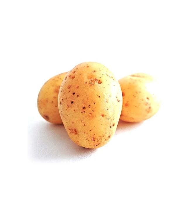 Flocons de pomme de terre - Faire germer des pommes de terre ...