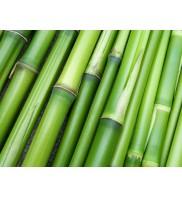 Poudre de bambou 75g